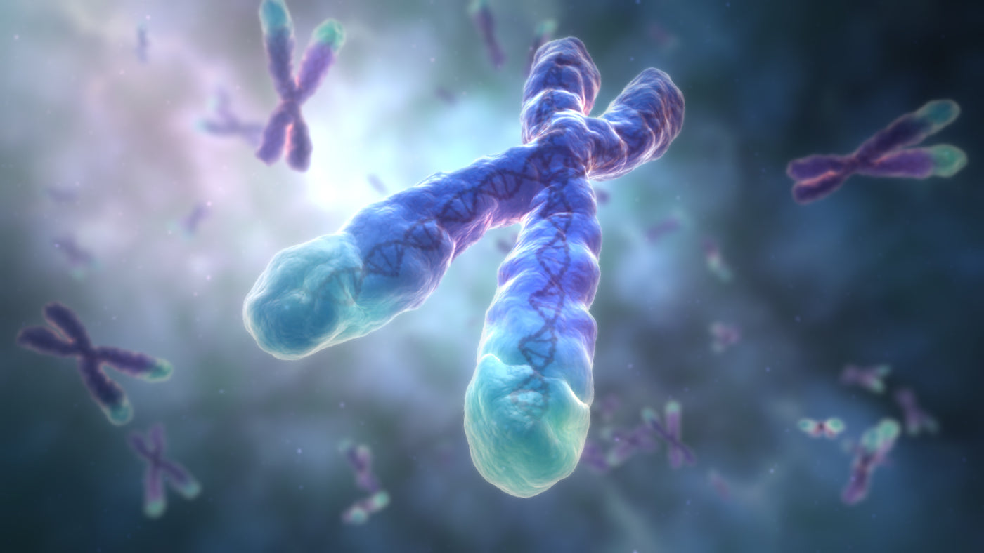 How to Lengthen Telomeres with 10 Natural Ingredients