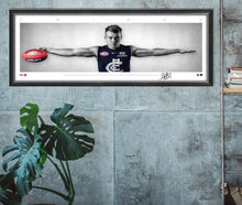 Load image into Gallery viewer, Patrick Cripps Mini Wings