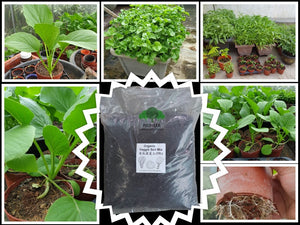 Veggie Soil Mix 10L, $3.50!