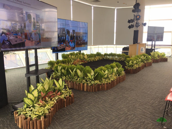 Pioneer Landscape Event Plant Display 3