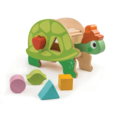 Wooden tortoise shape sorter toy with rainbow coloured blocks for toddlers and children