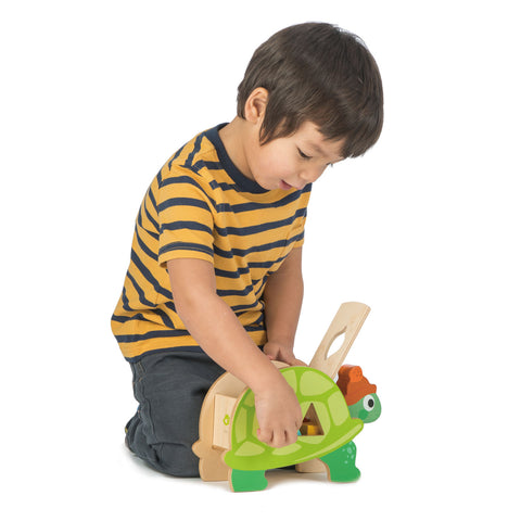 tortoise shape sorting toy made from sustainable wood with brightly coloured blocks