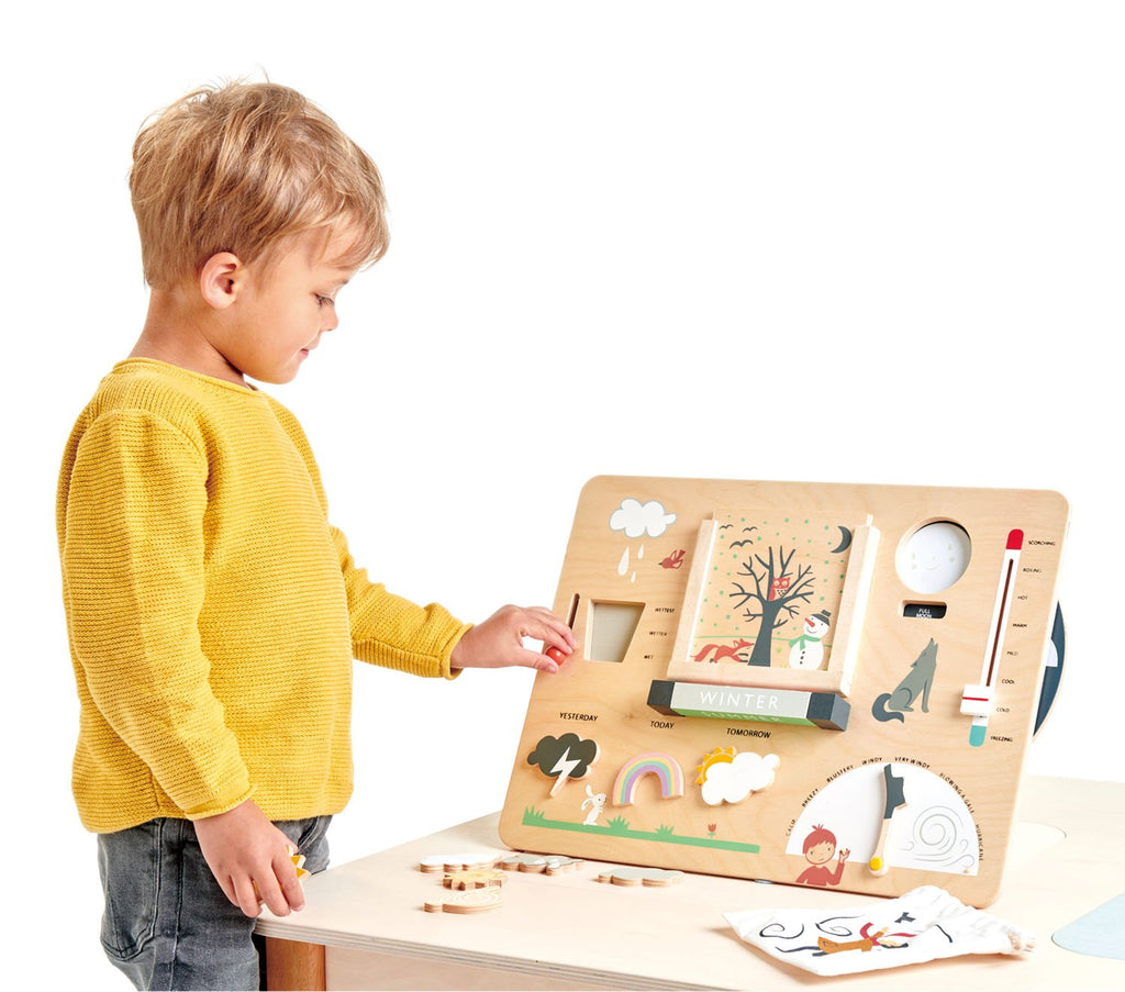 Tender Leaf Wooden toys educational weather game