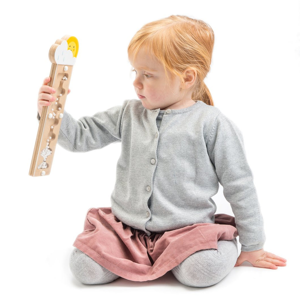 Tender Leaf Wooden toys rainmaker for toddlers