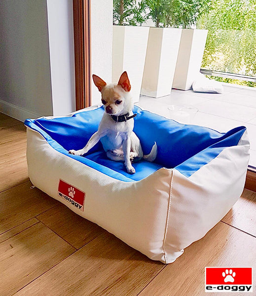 Are Orthopedic Dog Beds Worth It?