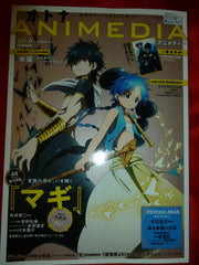 Magi Labyrinth of Magic Animedia Magazine