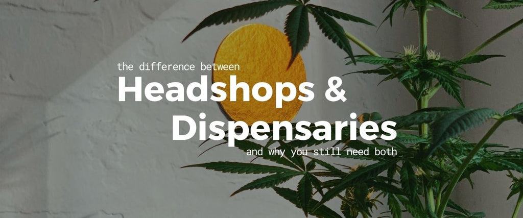 "Title image, ""The difference between headshops and dispensaries and why you still need both"", cannabis plant, gold circular wall art, concrete"