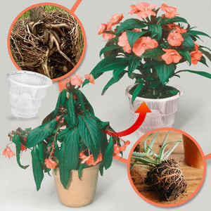 PlantMania Air Purning Pot