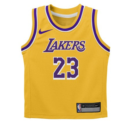 Preschool Little Boys LeBron James LA Lakers Icon Edition Replica Jersey