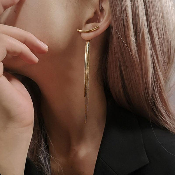 Snake Chain Long Tassel Earrings-earrings-Jiary
