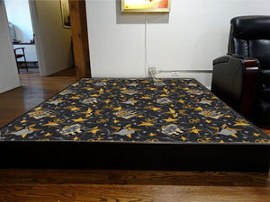 platform riser with carpeting