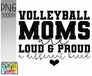 Volleyball moms -a different breed