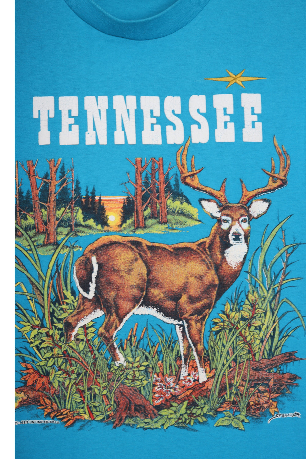 product-color-Tennessee T-Shirt