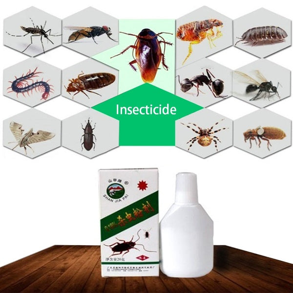 20g Super Effective Cockroach Bug Killer Powder Bed Bug Drug Cockroach Insecticide Kill Ant Spider Scorpion Bait Repellent
