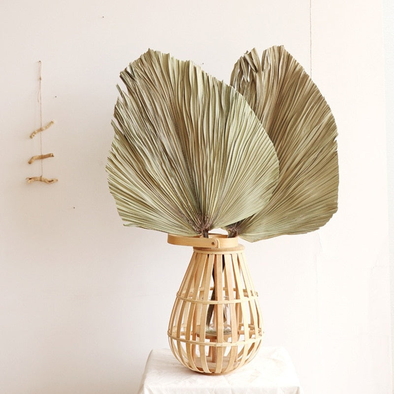 Palm Fan Leaf Dried Flower Palm Leaf Window Reception Party Art Wall Hanging Decoration Wedding Arch Arrangement
