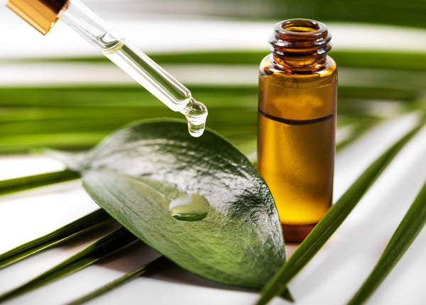 Pharma Grade Tea Tree Oil is the Best Your Skin Can Get!
