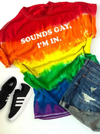 Sounds Gay I'm In Gay Pride Rainbow T-Shirt