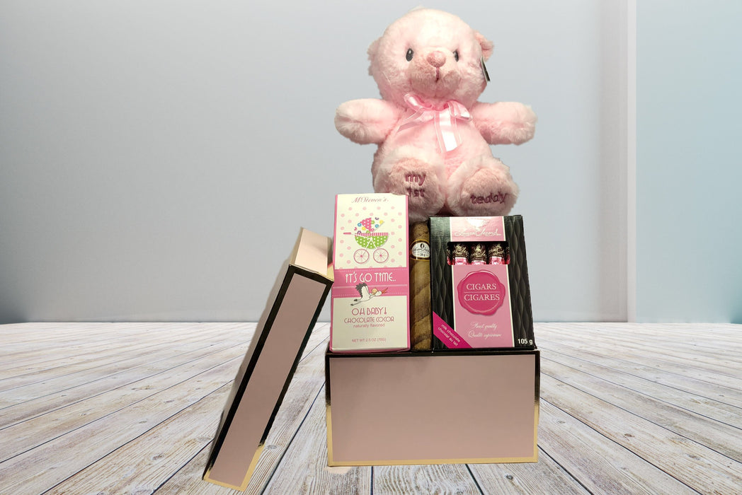 chocolate hot drink laura secord chocolates soft teddy bear plush baby shower baby welcoming gifts for him or her