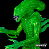 "Aliens Limited Edition 18""  Alien Warrior Acid Blood Green"