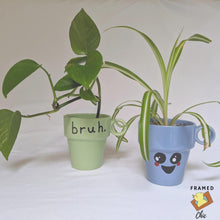 Load image into Gallery viewer, Cuppy Upcycled Coffee Cup Planter