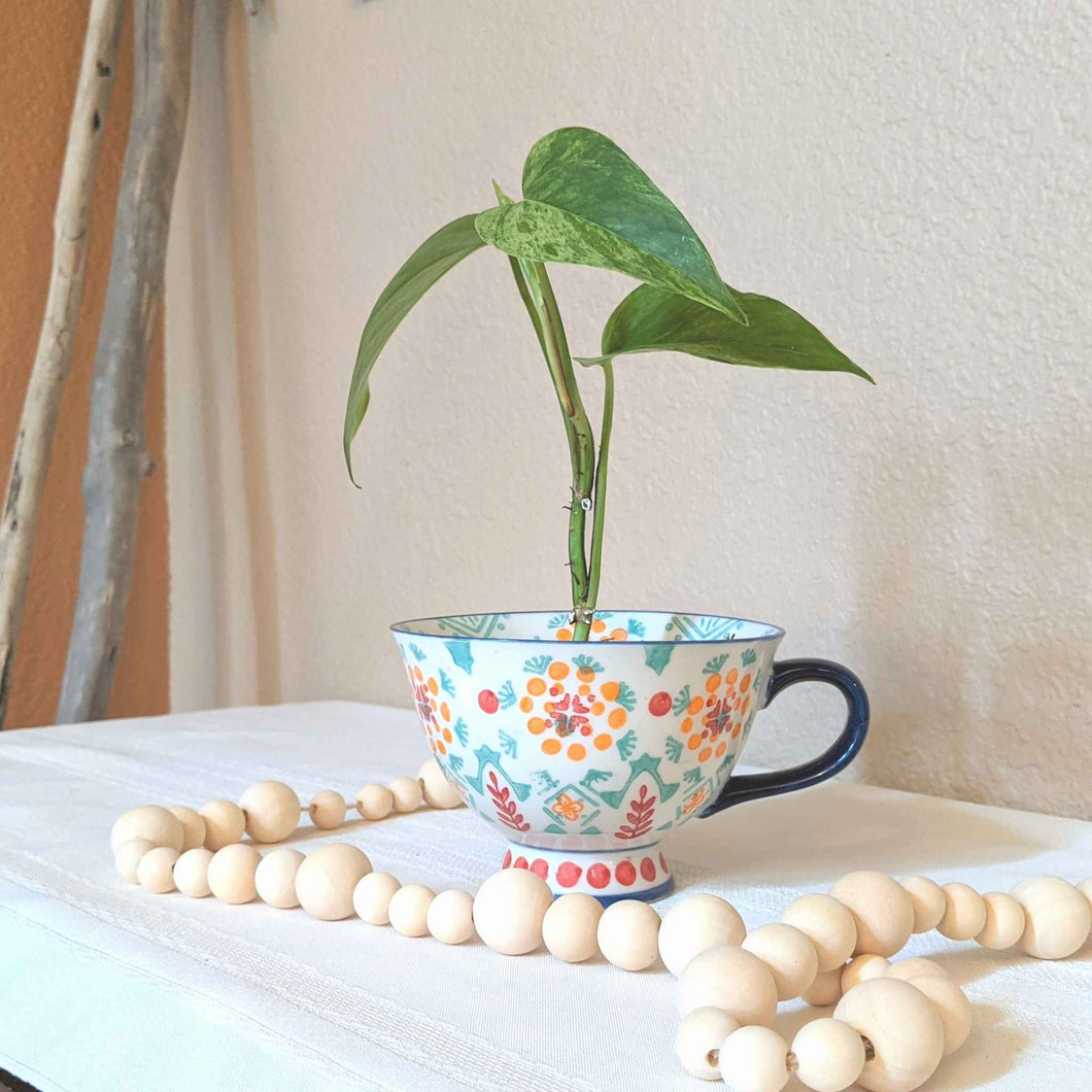Colorful ceramic bohemian style mug planter, live Pothos plant | FRAMED CHIC