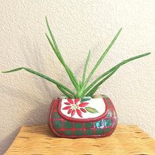 Load image into Gallery viewer, Ceramic Holiday Purse Planter