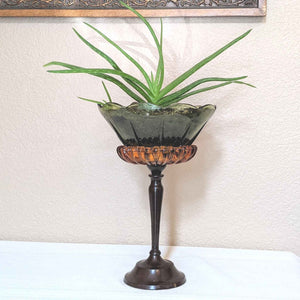 Upcycled vintage glass pedistal planter, art deco planter, vintage planter with aloe plant