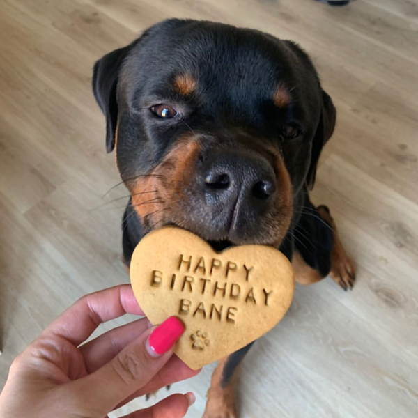 Personalised Dog Birthday Biscuits Gift Set