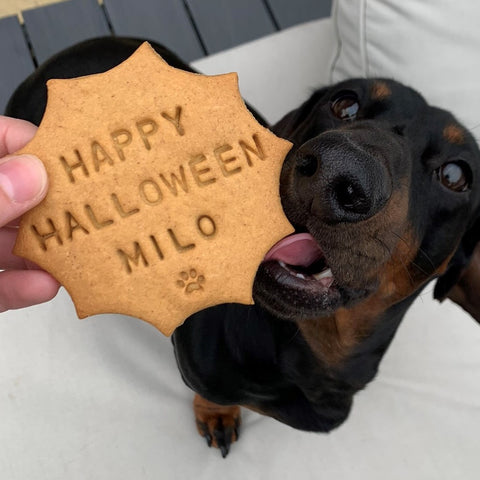 Personalised Halloween Dog Treats