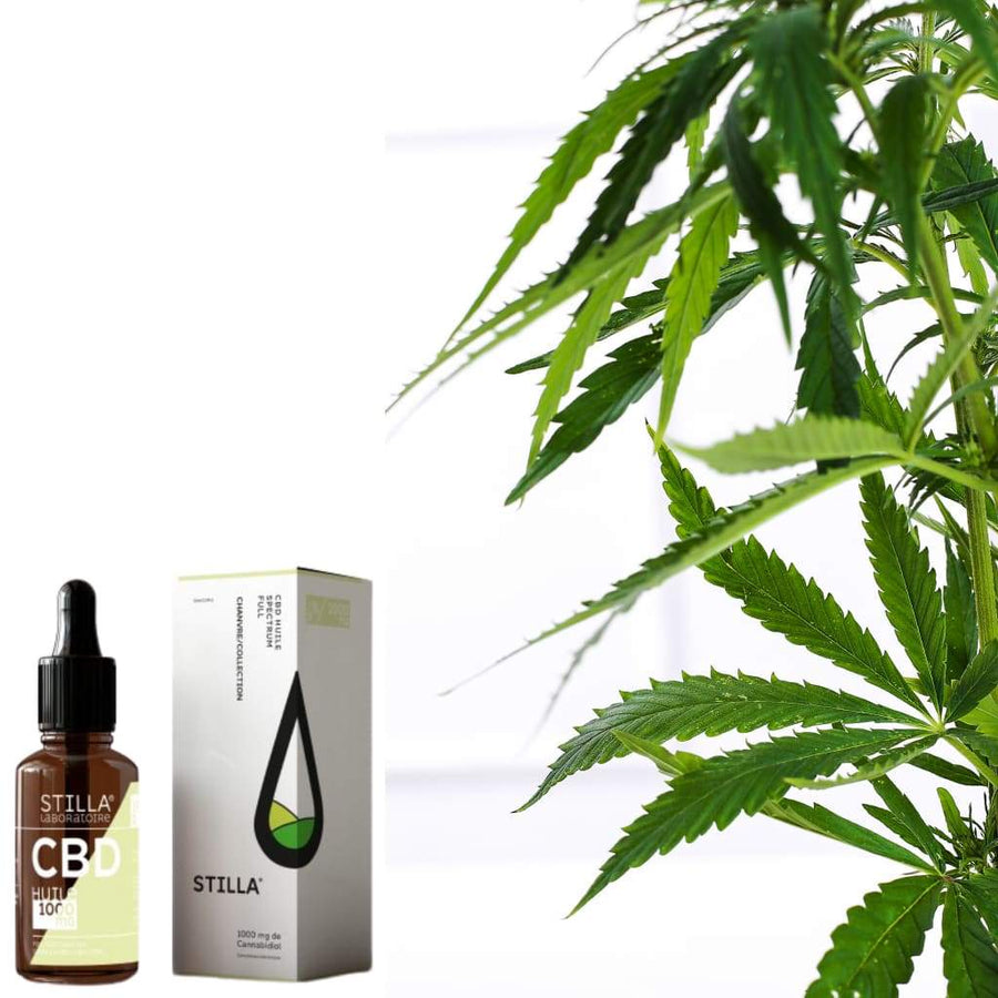 HUILE CBD 10% | 1000MG FULL SPECTRUM - Le bar à liquide