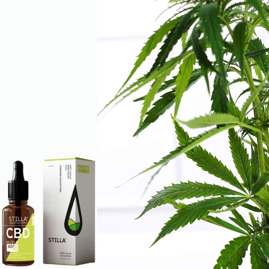 HUILE CBD 40% | 4000MG FULL SPECTRUM - Le bar à liquide