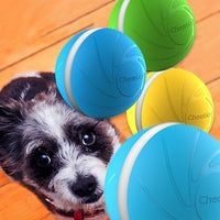 Wickedball - Interactive Pet Toy