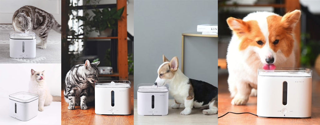PETKIT - Gen 2 Smart Pet Water Drinking Fountain