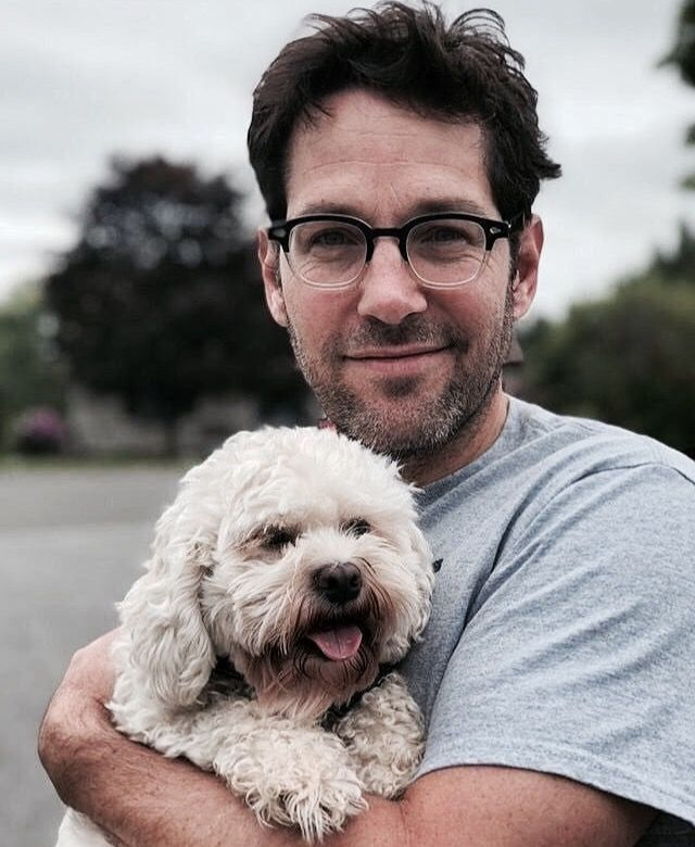 Image result for paul rudd dog
