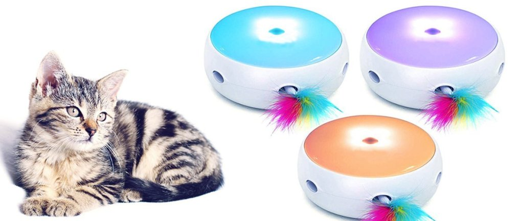 cat next to three cat toys