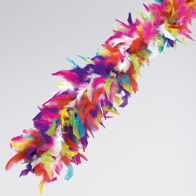 Feather Boa, Multicoloured   OHHHH LAAAA LAAA Add this gorgeous Feather Boa to add some sophistication to any costume.
