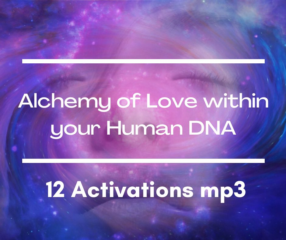 Transformational Course - 12 x activations from live event