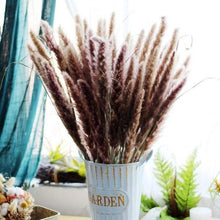 Load image into Gallery viewer, Fashionable  25Pcs/Set Natural Dried Pampas Grass Reed Home Wedding Decor Photography Props