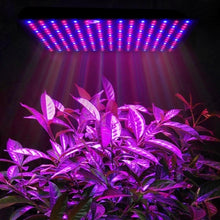 Load image into Gallery viewer, Led Grow Light Full Spectrum Greenhouse Garden Indoor Hydroponic Plant Grow Light Full Spectrum Growing Plant Grow Light Panel Gardening Supplies LED Lights