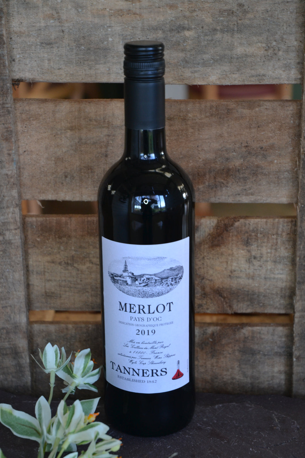 Tanners Red Wine - Merlot 13% vol