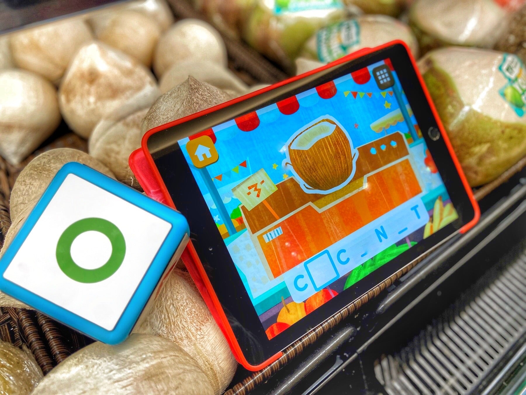 Cookie Kiddle cube and iPad with real coconuts