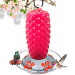 Ruby Retro Hummingbird Glass Feeder 20oz