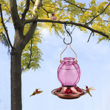 Glass Ball Shape Retro Hummingbird Feeder 18oz