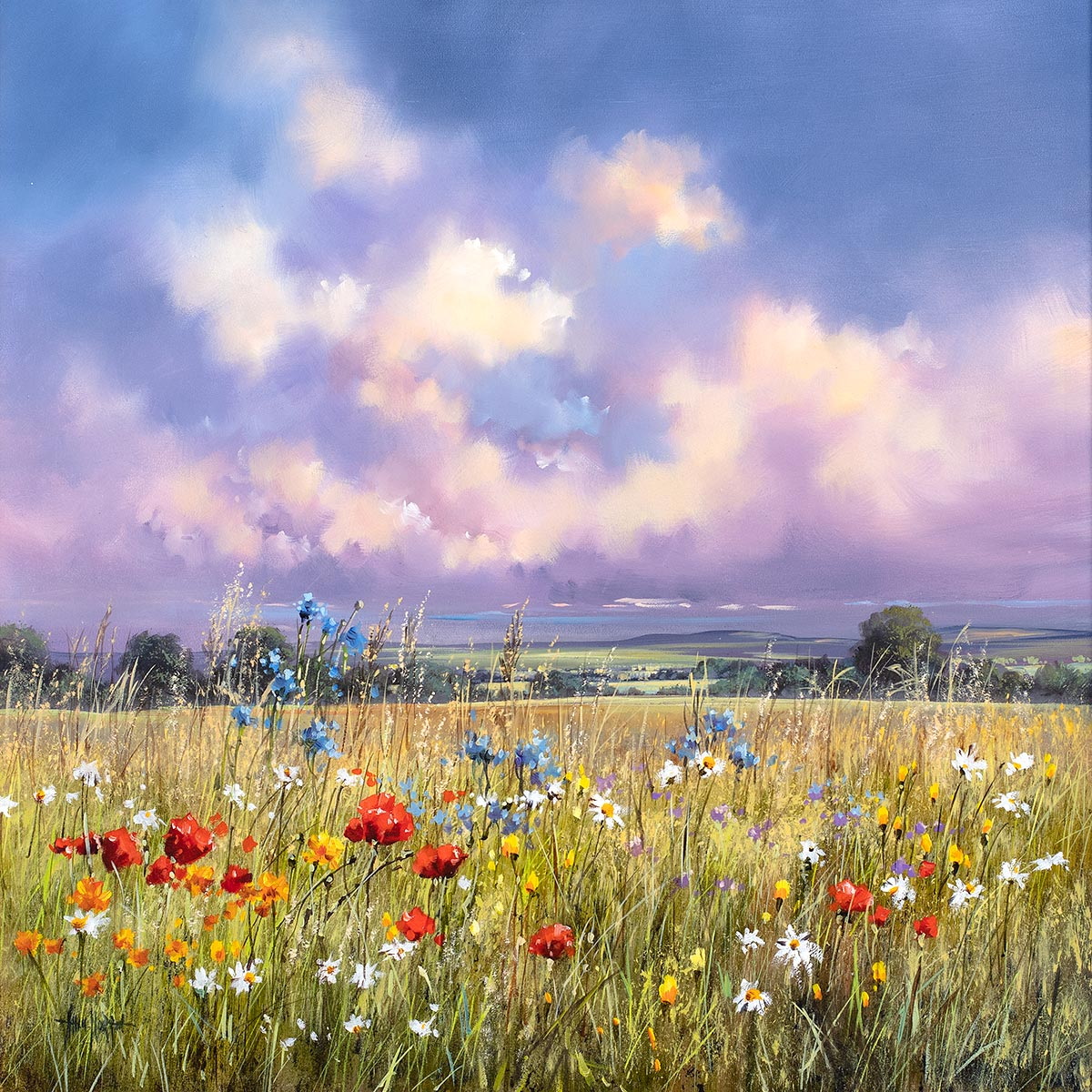 Flower Field II - Original Allan Morgan Framed