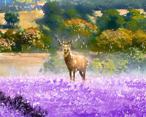King of the Fields - SOLD Allan Morgan