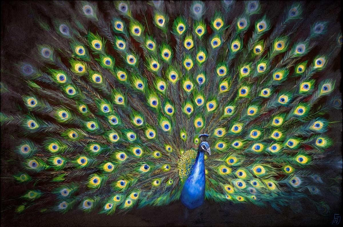 Colours of a Feather Faye Nasser Joley