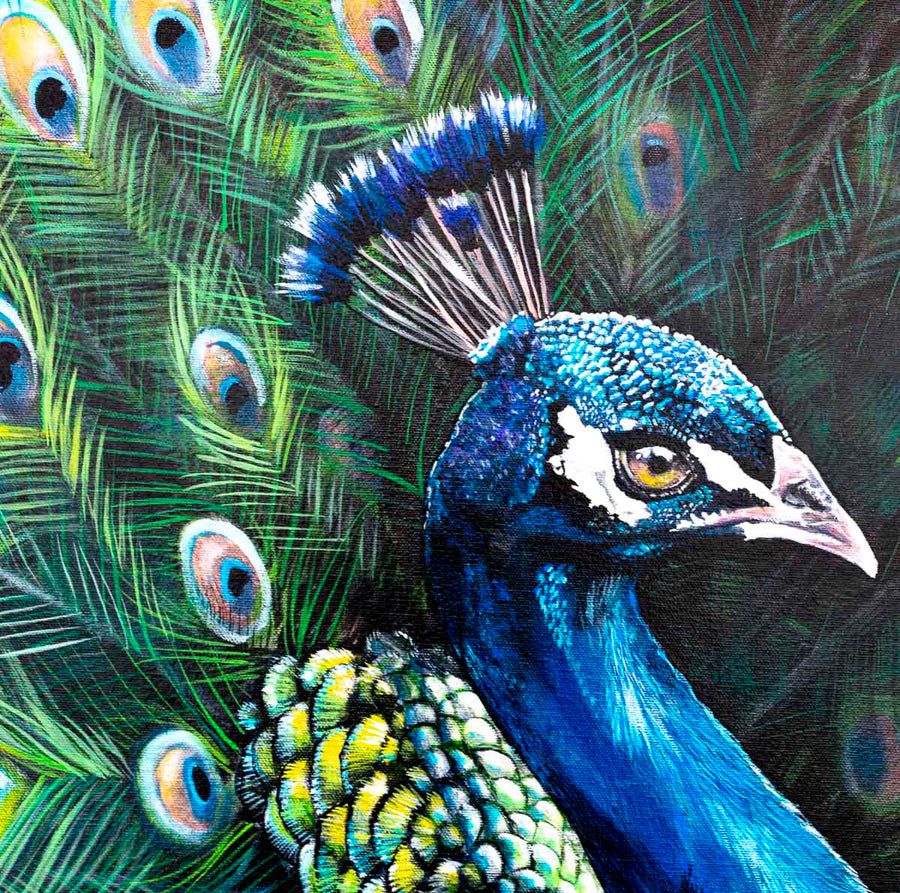 Peacock Teion - Original Faye Nasser Joley Framed