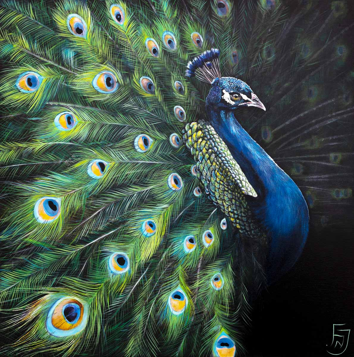 Peacock Teion - Original