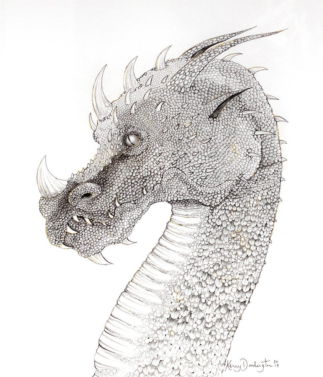 Dragon of Hidden Treasures - Sketch Kerry Darlington Framed
