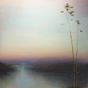 Fading Light Louise Fairchild